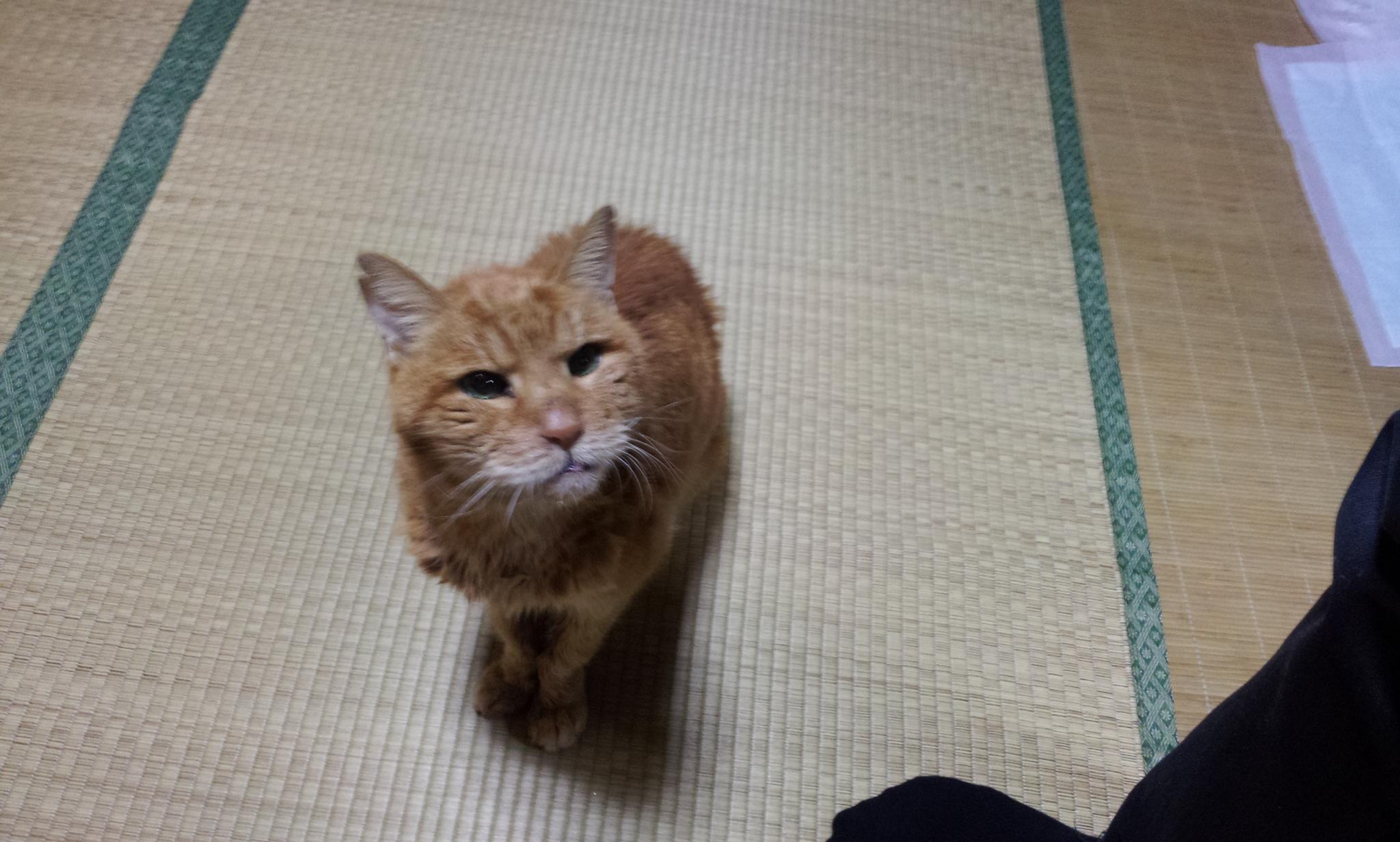2012-01-10 01.11.43.jpg