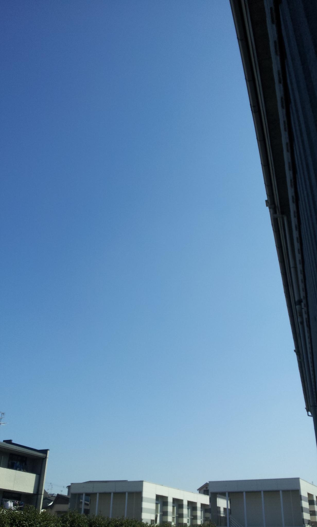 2012-03-14 09.40.25.jpg